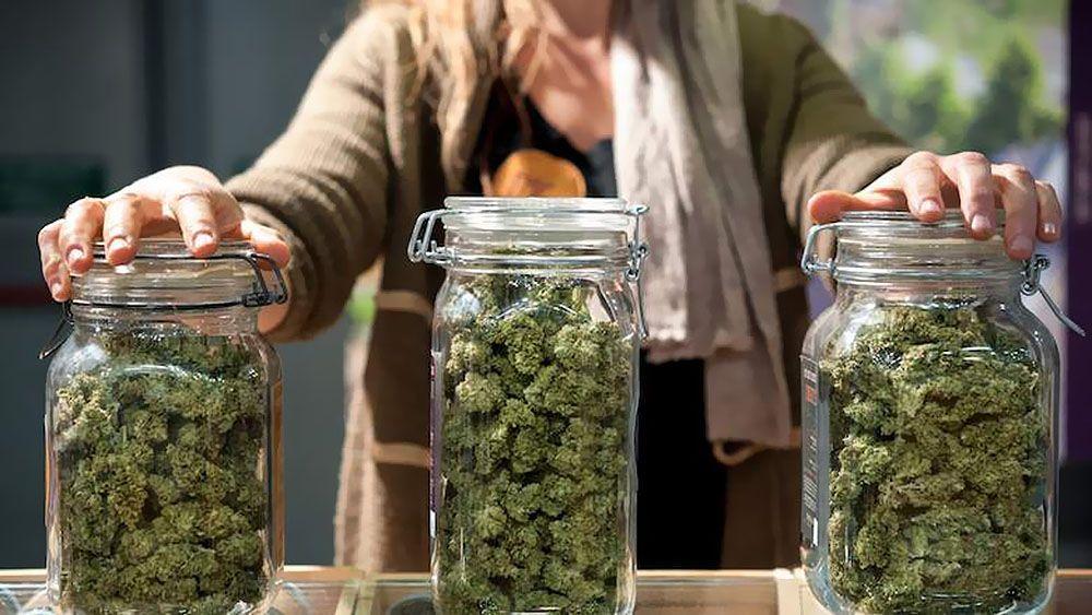 Przechowywanie, Przechowywać, Gdzie, Miejsce, Susz, Suszu, Marihuany, Marihuanę, Cannabis